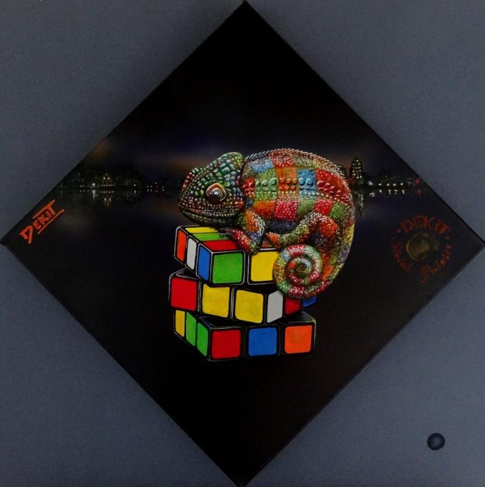 Caméléon sur Rubik cube